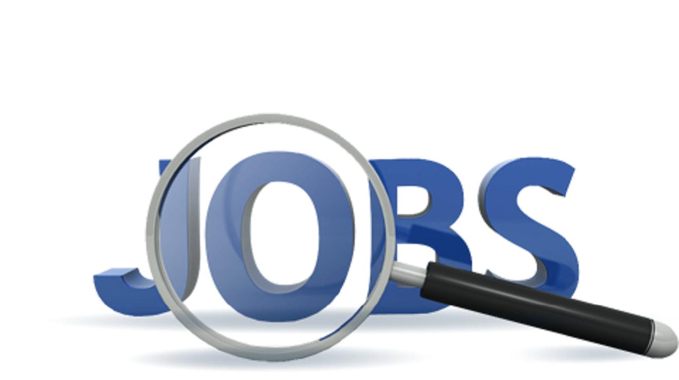 البحث عن عمل في امريكا
